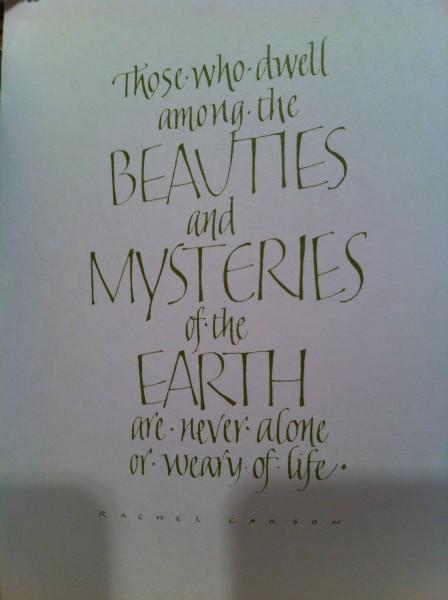 Beauty mystery Earth